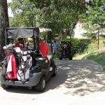 Golf carts going down a shady tree lined path