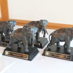 Trophies of elephants with their trunks down